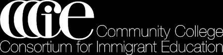 Promising Practices in Immigrant Education Database